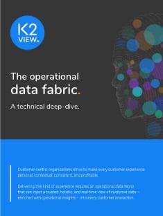 K2View Data Fabric technical deep-dive-3