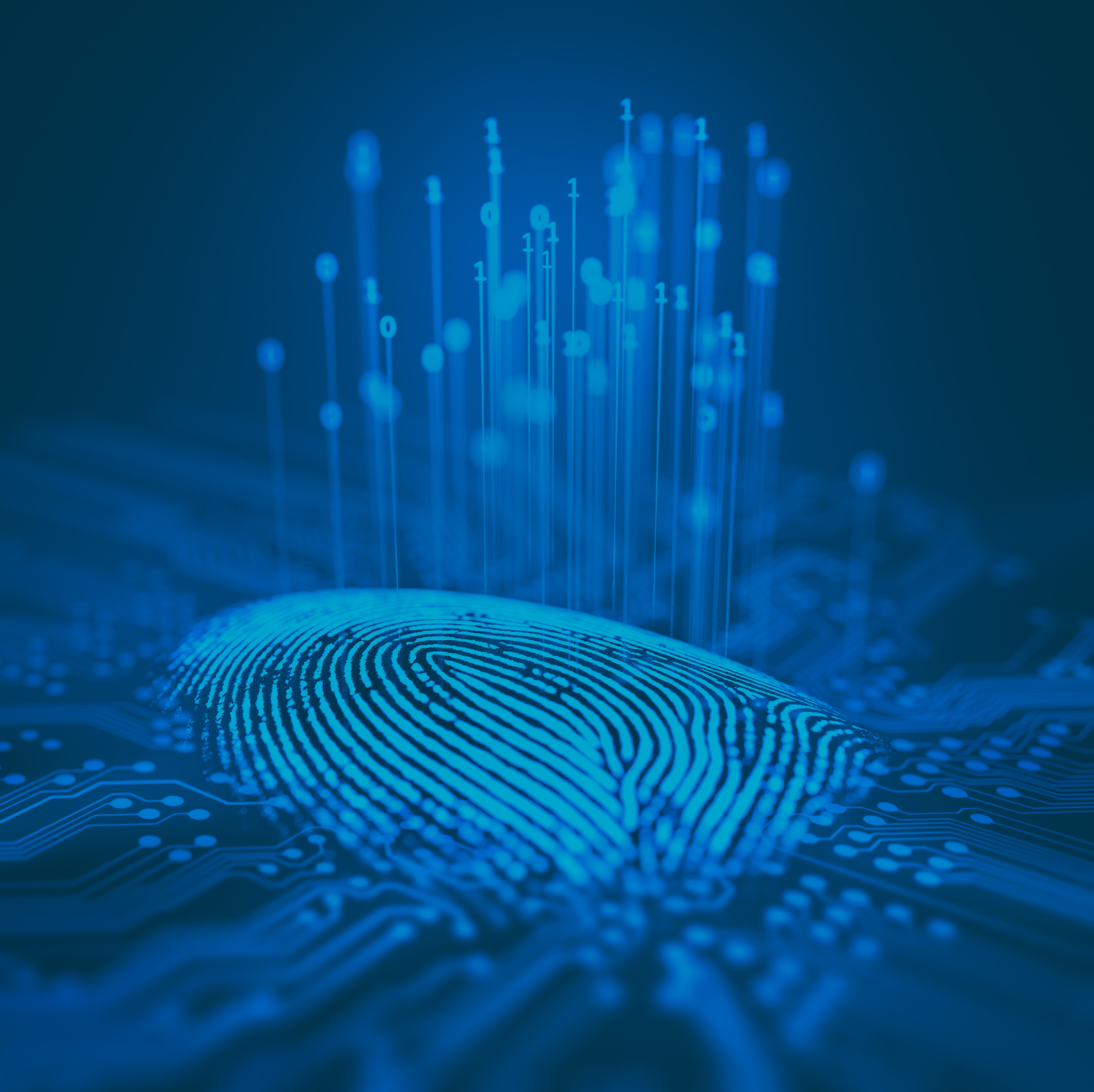 K2View Data Privacy