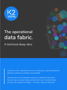 K2View Data Fabric technical deep-dive-2