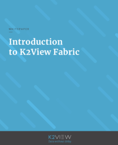 Understanding K2View Fabric - White Paper