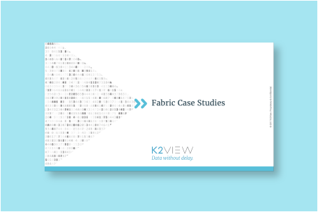 K2View Fabric Case Studies